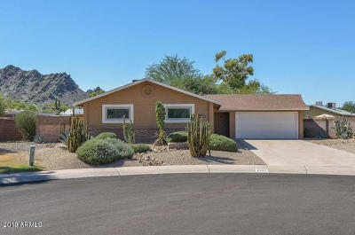 Phoenix Single Family Home For Sale: 2323 E Shaw Butte Drive