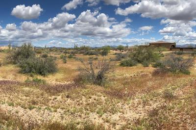 Residential Lots & Land For Sale: 39909 N 142nd Street