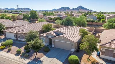 Queen Creek Single Family Home For Sale: 33112 N Cat Hills Avenue
