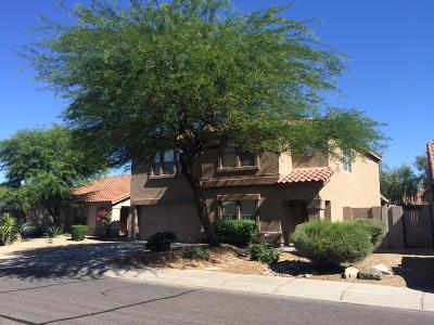 Phoenix Single Family Home For Sale: 4022 E Tether Trail