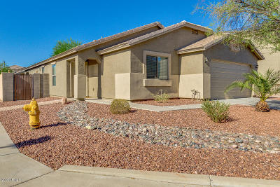 Buckeye Single Family Home For Sale: 24156 W Tonto Street