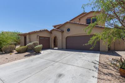 Goodyear AZ Single Family Home For Sale: $399,900