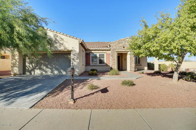 Sun City Single Family Home For Sale: 21913 N Pedregosa Court