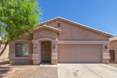 San Tan Valley Single Family Home For Sale: 723 E Horizon Heights Drive