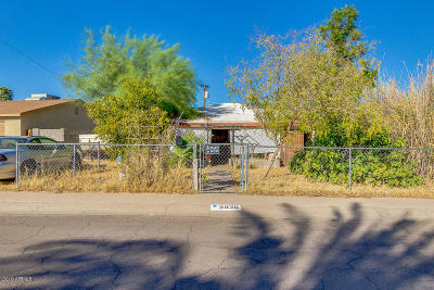 Phoenix Single Family Home For Sale: 2920 W Golden Lane