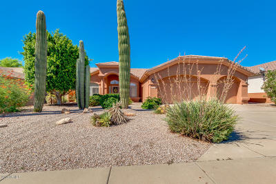 Mesa Single Family Home For Sale: 6350 E Hermosa Vista Drive