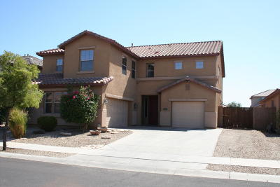 Goodyear Single Family Home For Sale: 553 S 165th Drive