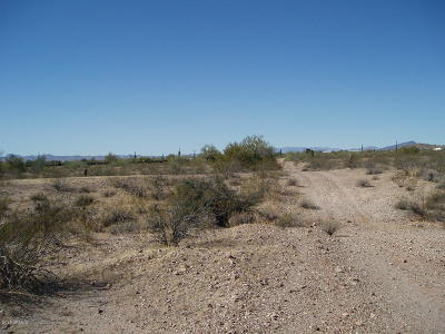 Residential Lots & Land For Sale: 35101 W Olesen Road