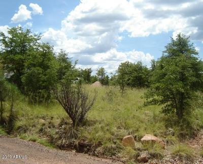 Residential Lots & Land For Sale: 10a N Myrtle Point Trail