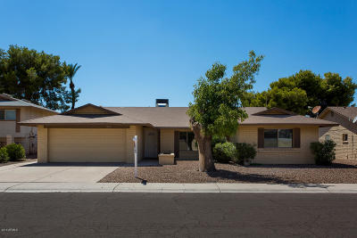 Tempe Single Family Home For Sale: 7232 S La Rosa Drive