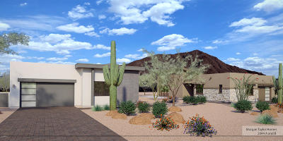Cave Creek Multi Family Home For Sale: 37017 Conestoga Trail #A and B