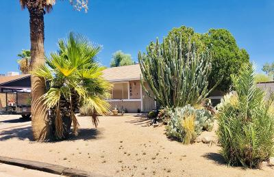 Apache Junction Single Family Home For Sale: 1863 S Buena Vista Drive