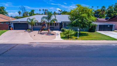 Mesa Single Family Home For Sale: 253 N Fraser Drive