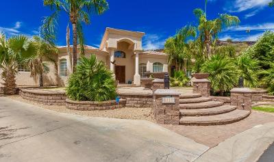 Phoenix AZ Single Family Home For Sale: $900,000
