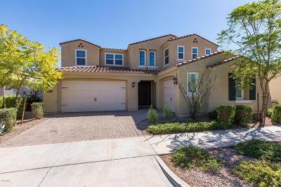Mesa AZ Single Family Home For Sale: $399,000