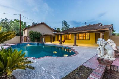 Mesa Multi Family Home For Sale: 456 Robson
