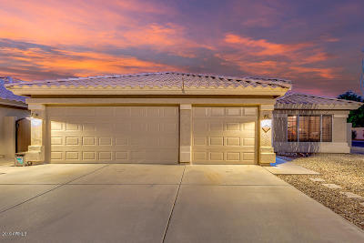 Phoenix Single Family Home For Sale: 4431 E Mountain Sage Drive