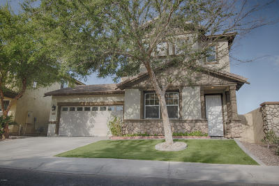 Chandler Single Family Home For Sale: 1070 N Mason Drive