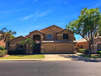 Mesa Single Family Home For Sale: 6949 E Monte Avenue