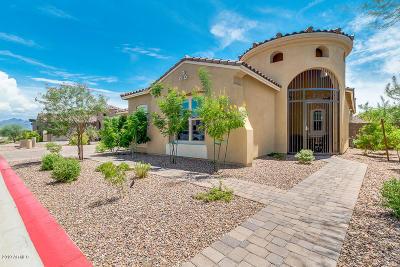 Mesa Single Family Home For Sale: 9847 E June Street
