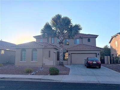 Gilbert Single Family Home For Sale: 6872 S Birdie Way