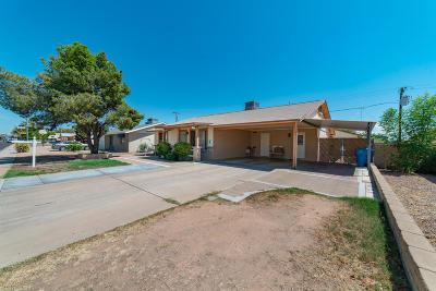 Phoenix Single Family Home For Sale: 3139 W Mandalay Lane