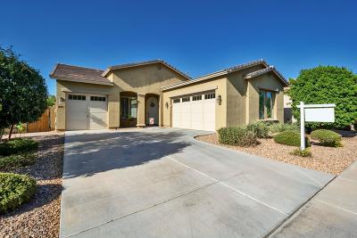 Gilbert Single Family Home For Sale: 2866 E Ridgewood Lane