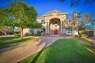 Casa Grande Single Family Home For Sale: 1570 N Casa Bella Court