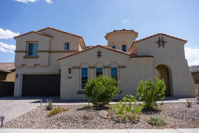 Gilbert Single Family Home For Sale: 2161 E Tomahawk Drive