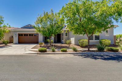 Gilbert Single Family Home For Sale: 3505 E Bart Street