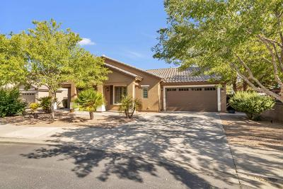 Queen Creek Single Family Home For Sale: 19188 E Macaw Drive