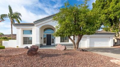 Glendale AZ Single Family Home For Sale: $675,000