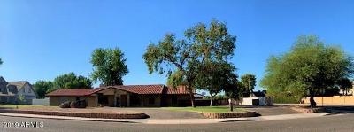 Glendale Single Family Home For Sale: 6033 W Sunnyside Drive