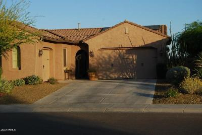 Phoenix Single Family Home For Sale: 2040 W Chimney Rock Road