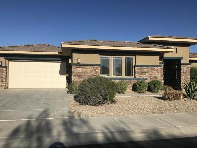 Goodyear AZ Single Family Home For Sale: $525,000