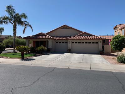 Goodyear Single Family Home For Sale: 15973 W Bartlett Avenue