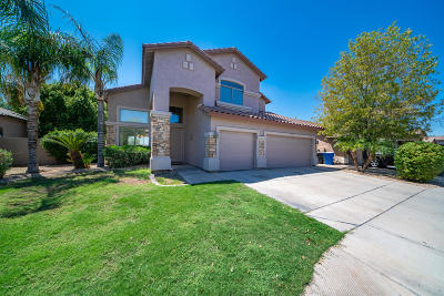 Chandler Single Family Home For Sale: 3924 S Hollyhock Place