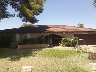 Phoenix Single Family Home For Sale: 4132 W Purdue Avenue