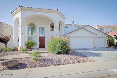 Gilbert Single Family Home For Sale: 1560 W Laurel Avenue