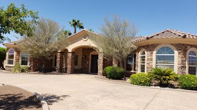 Cave Creek Single Family Home For Sale: 5616 E Barwick Drive