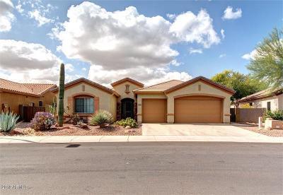 Phoenix Single Family Home For Sale: 2231 W Shackleton Drive