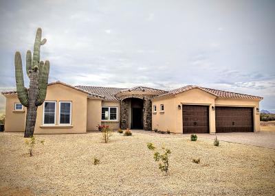 Scottsdale Single Family Home For Sale: 16419 E Morning Vista Lane