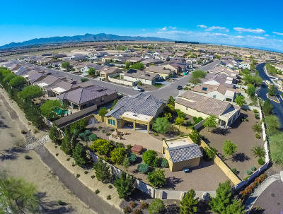 Goodyear Single Family Home For Sale: 16721 W Almeria Road