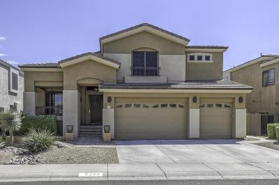 Phoenix Single Family Home For Sale: 5243 E Herrera Drive