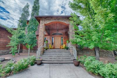 Show Low Single Family Home For Sale: 1920 S Knoll Trail