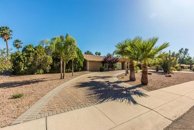 Glendale Single Family Home For Sale: 6313 W Larkspur Drive