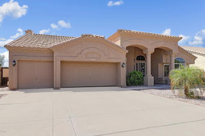 Chandler Single Family Home For Sale: 5743 W Gary Drive