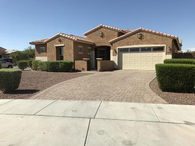 Queen Creek Single Family Home For Sale: 20204 E Maya Road