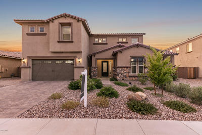 Gilbert Single Family Home For Sale: 7682 S Abbey Lane