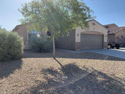Sun City West Single Family Home For Sale: 23019 N 123rd Drive